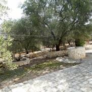 Terrace SMS1