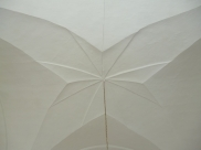 unusual star vaulted ceiling