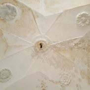 ceiling with flowers 38,000